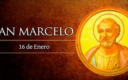 San Marcelo, Papa