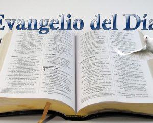Evangelio de hoy Miércoles de la 27 semana del Tiempo Ordinario