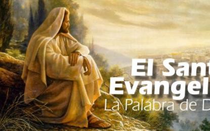 Lectura del santo Evangelio según San Lucas 17, 26-37